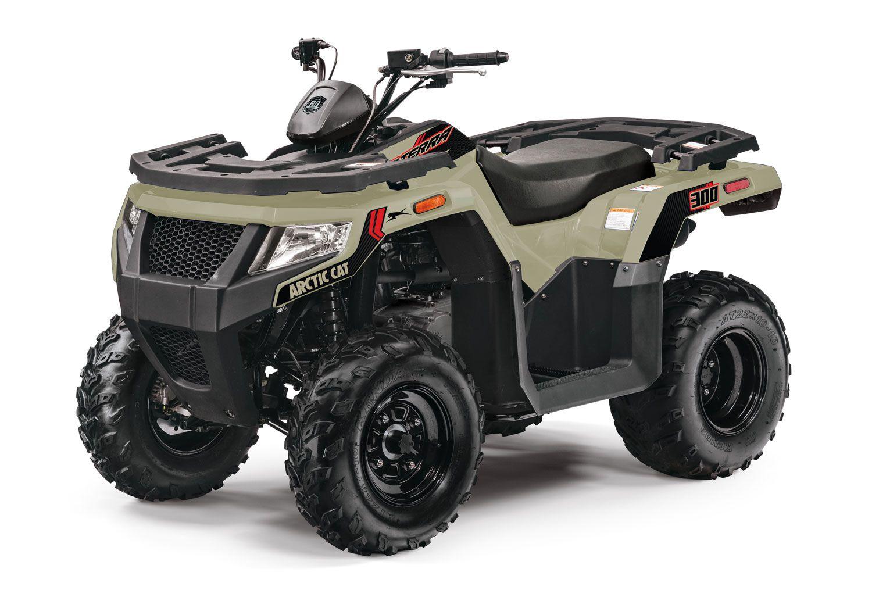 The 2WD Alterra 300 in Coyote Tan
